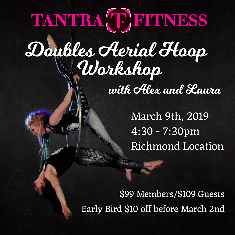 Doubles Aerial Hoop Workshop